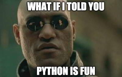 funny python meme 27 - python is fun