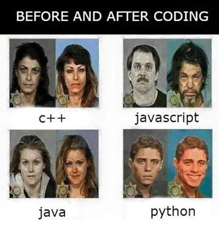 hilarious python meme 10 - before and after coding