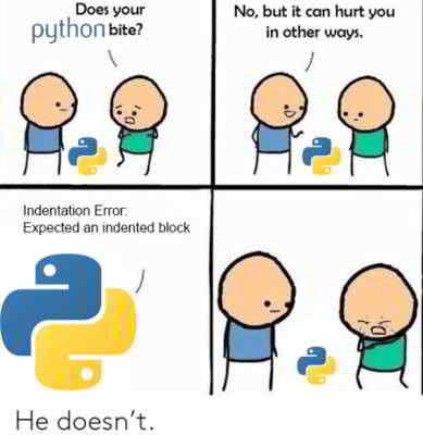 python meme 12 - does your python bite